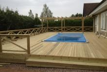 runt-pool